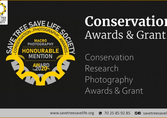Conservation Awards & Grant